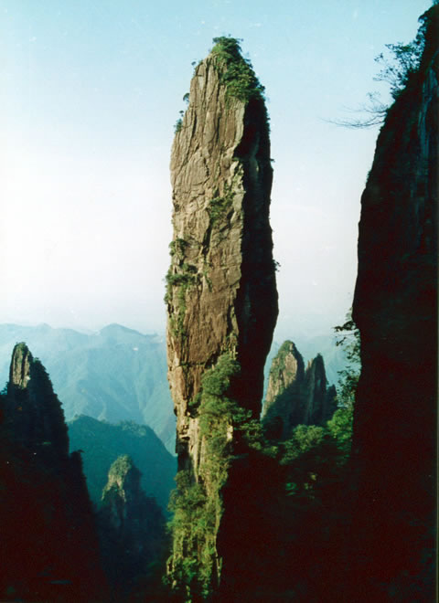 ... 郴州 九 龙江 国家 森林 公园 简介 四月 郴州 莽山